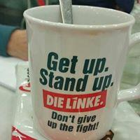 Online-Angebote DIE LINKE. Baden-Württemberg, Rosa-Luxemburg-Stiftung u.a.